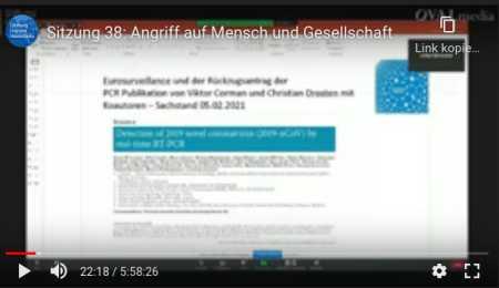 Prof. Ulrike Kämmerer, in Stiftung Corona Ausschuss, Sitzung 38: Angriff auf Mensch und Gesellschaft